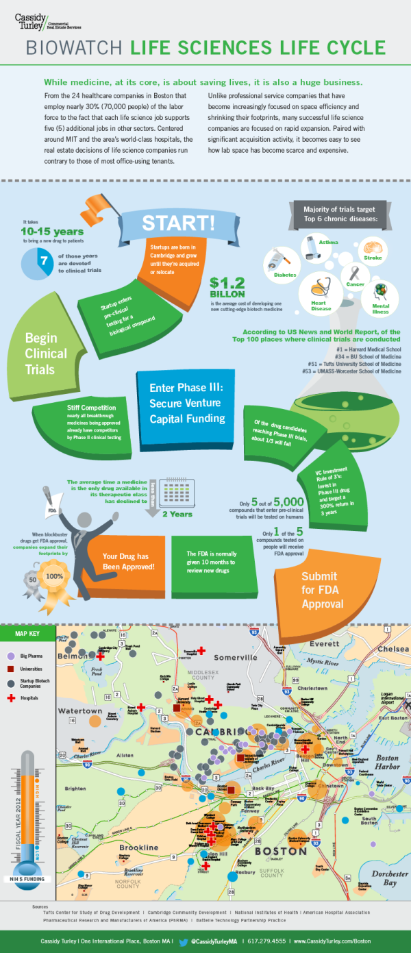Infographics Biowatch Life Sciences Life Cycle Science Life