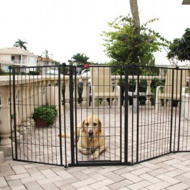 Pet Gates Carlson Outdoor Super Gate, Outdoor Pet Gate With Door