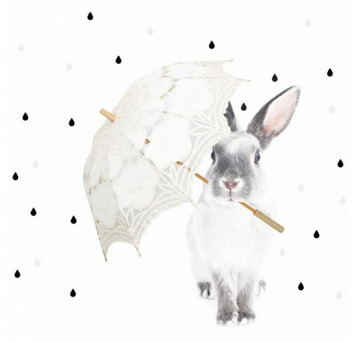 Wandaufkleber Hase Im Regen Wandtatoo Hase Wandtattoo Aufkleber Fur Wande Wandsticker Kinderzimmer