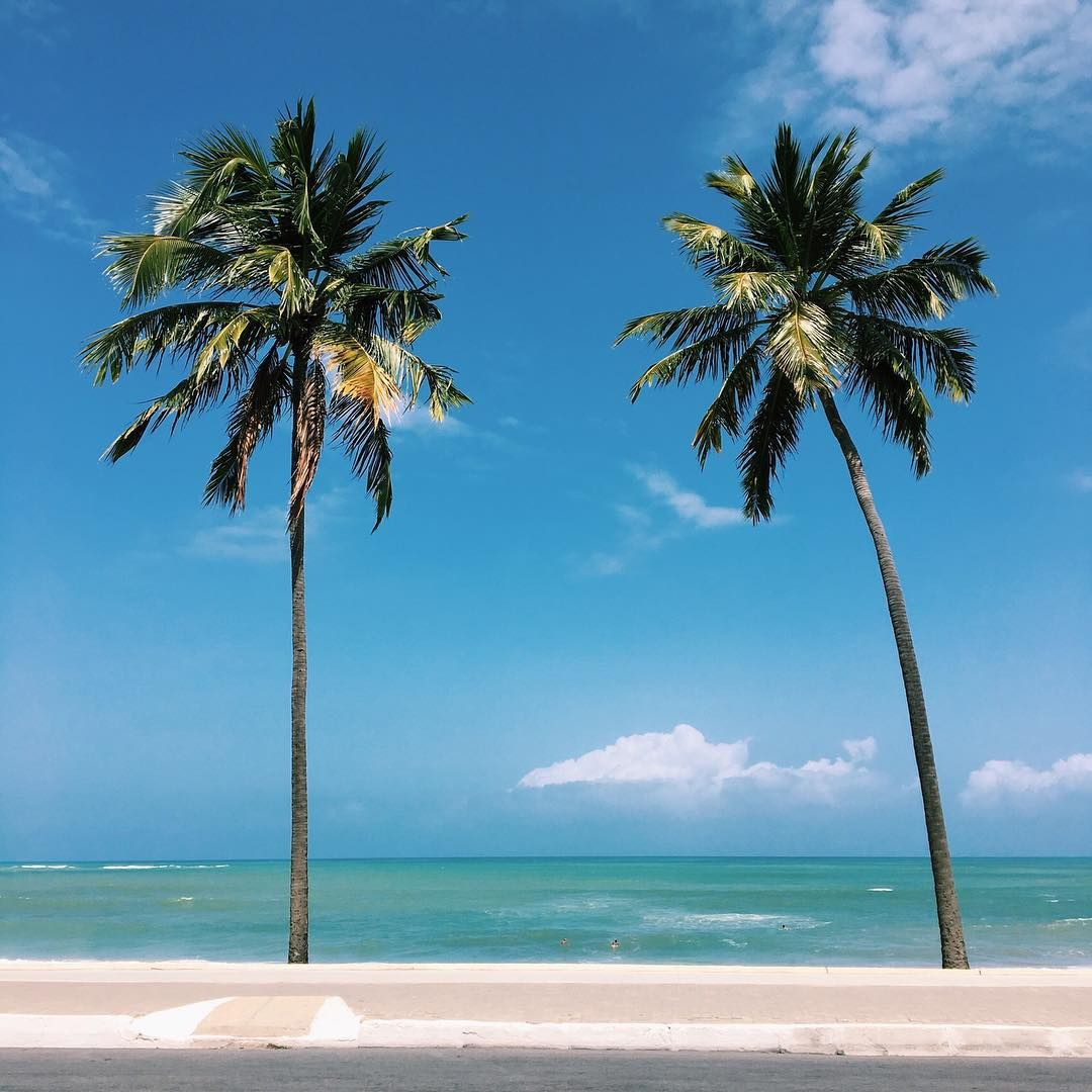 South Pacific Beaches: Images Of The South Pacific