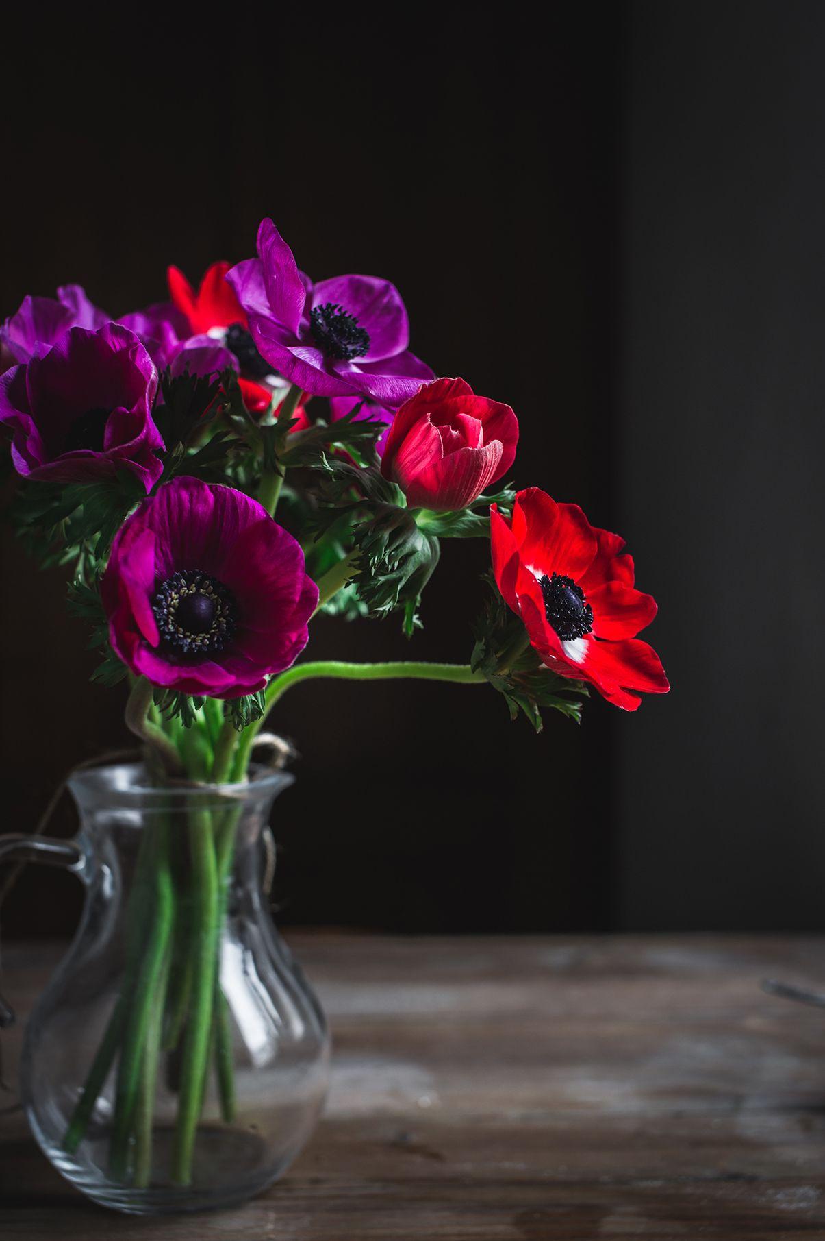Flowers Composition In 2020 Dark Flowers Anemone Flower Flowers