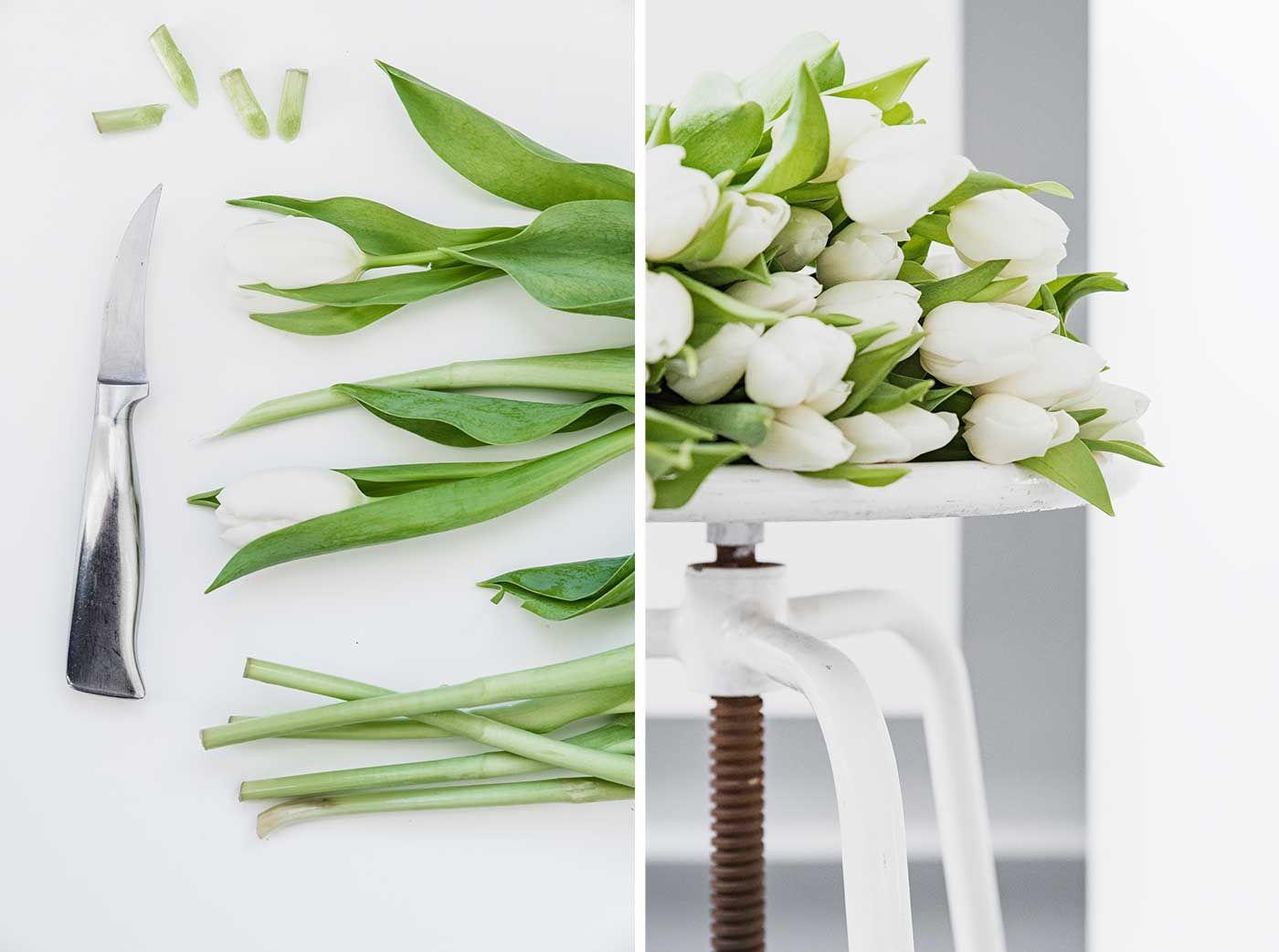 10 tipps, wie schnittblumen länger frisch bleiben | housekeeping, Garten und erstellen