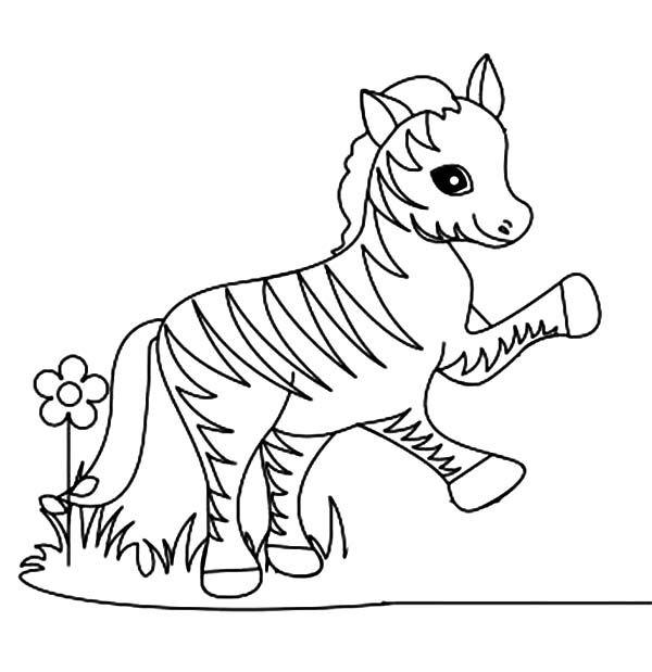 Zebra Funny Little Zebra Coloring Page Zebra Coloring Pages Animal Coloring Pages Cute Coloring Pages