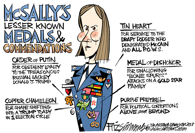 martha mcsally cartoon - Google Search in 2020 | Arizona daily star,  Cartoon, Cartoon memes