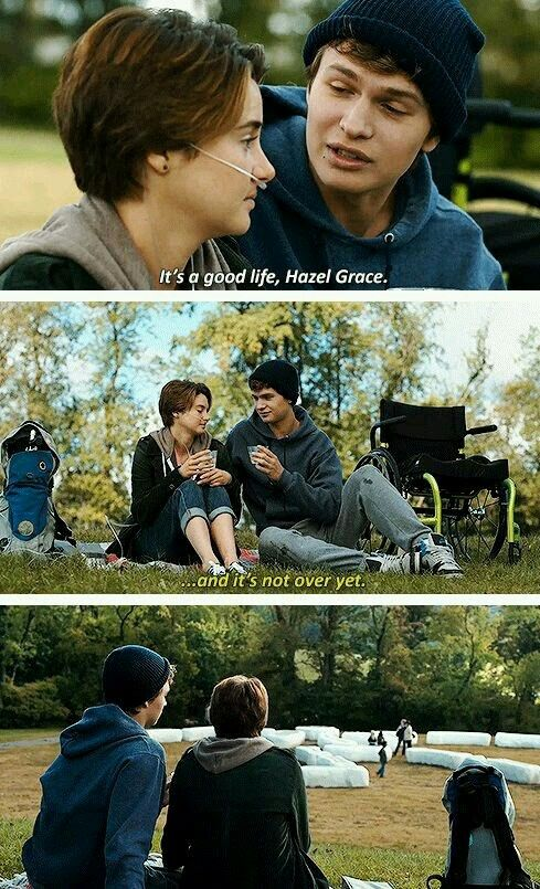 Pin by Amandab727 on the fault in our stars | The fault in ...
