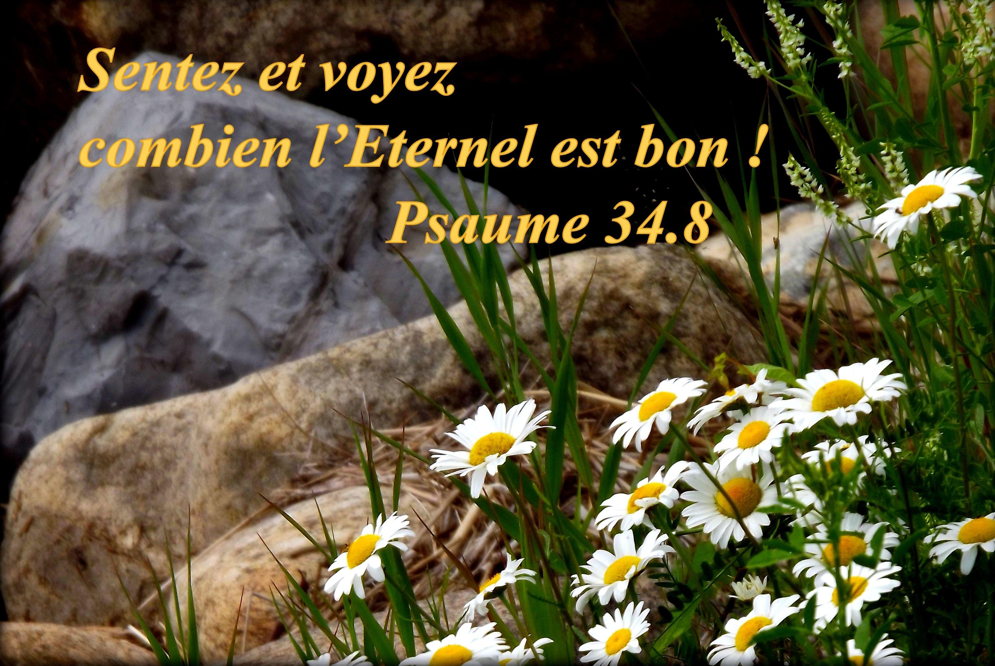 Oui, Dieu est bon pour nous.  Il s'agit d'être attentif aux détails de la vie pour le voir agir!