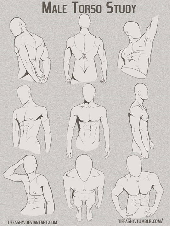 Anime Manga Male Torso Poses And References Drawing Body Poses Body Reference Drawing Figure Drawing Reference