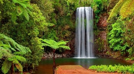 Tropical waterfall beautiful tropical jungle trees fall tropical waterfall beautiful tropical jungle trees fall exotic waterfall voltagebd Image collections