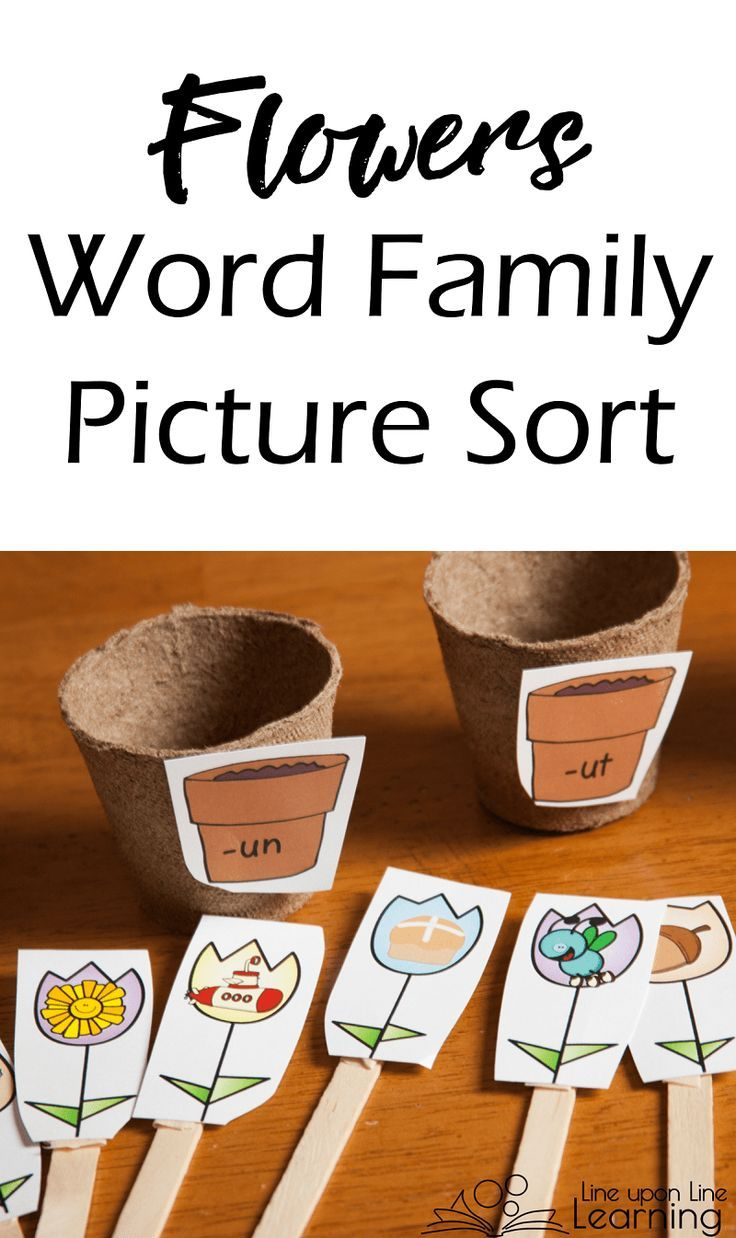 Flower Themed Word Family Picture Sort Line Upon Line Learning Word Families Kindergarten Word Families Word Family Sort [ 1238 x 736 Pixel ]