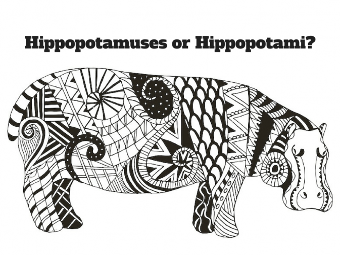 plural of hippopotamus i love christmas music in general and one song that i think - Plural Of Christmas