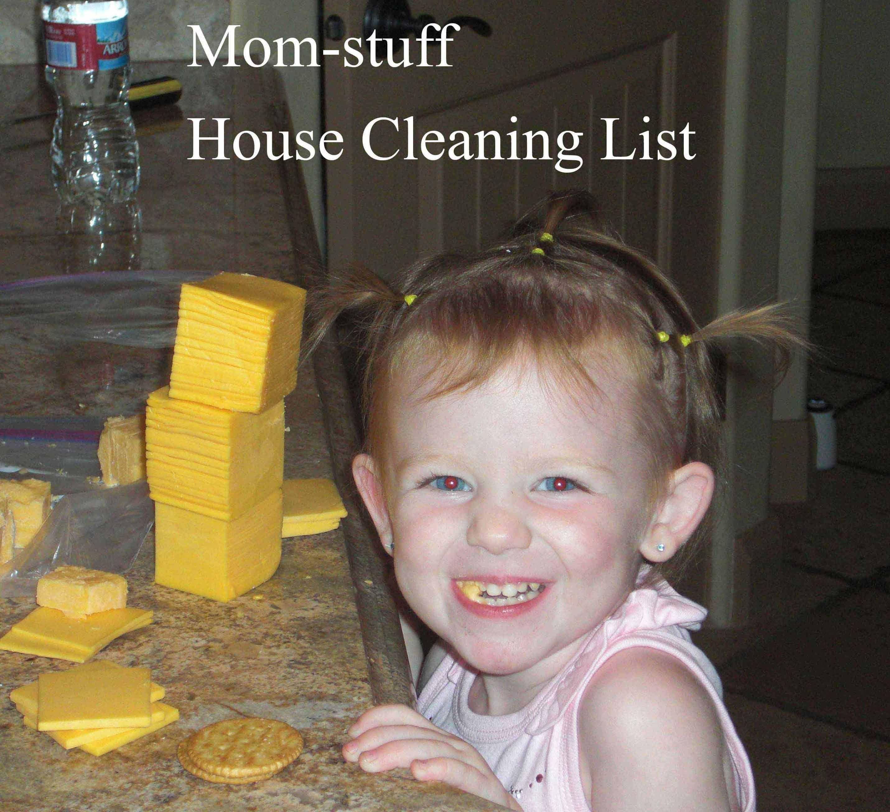 Die Besten Tipps Um Teppiche Sauber Zu Halten: Die Besten 25+ Hausreinigung Listen Ideen Auf Pinterest