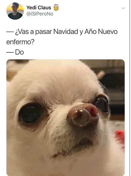 Pin De Lucia Month En Memes Memes Divertidos Imagenes De Perros Graciosos Memes De Enfermos