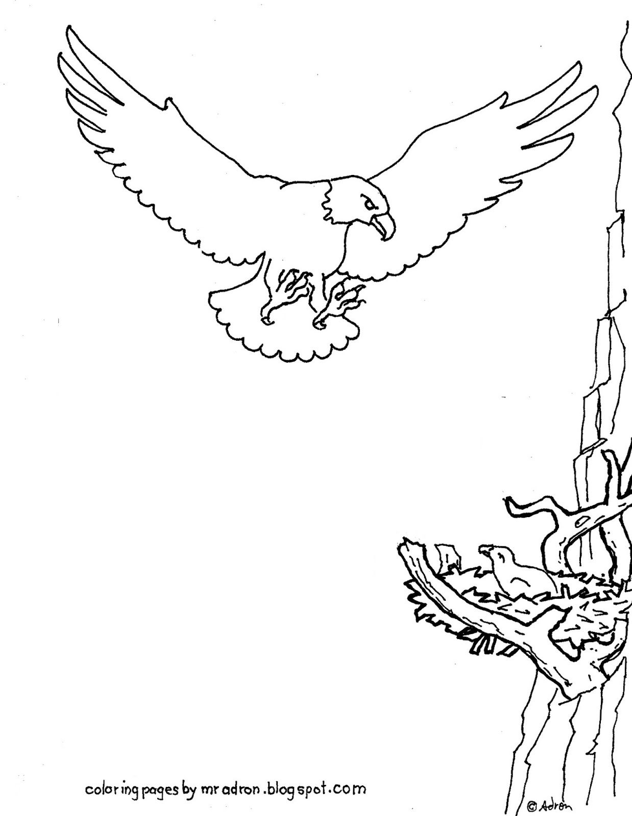 Coloring Pages for Kids by Mr Adron Printable Eagle
