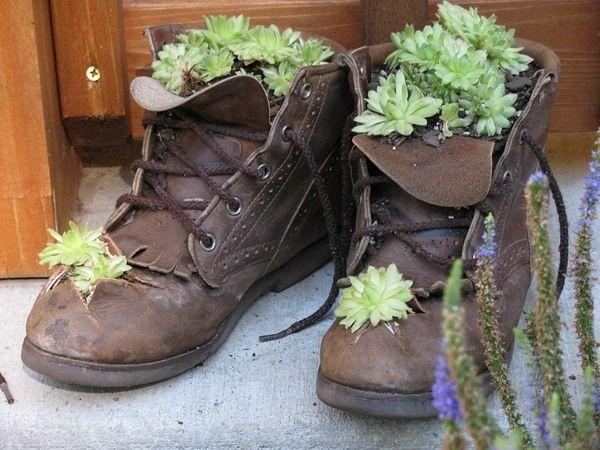alte schuhe bepflanzen ideen sukkulenten deko | pflanzen, Garten und Bauten