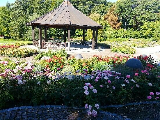 Botanischer Garten Japan Garten Augsburg Germany Botanischer Garten Augsburg Botanischer Garten Japanischer Garten