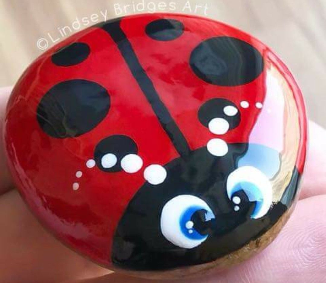 Beautiful Super Shiny Ladybug Painted Rock Wcpr With Images