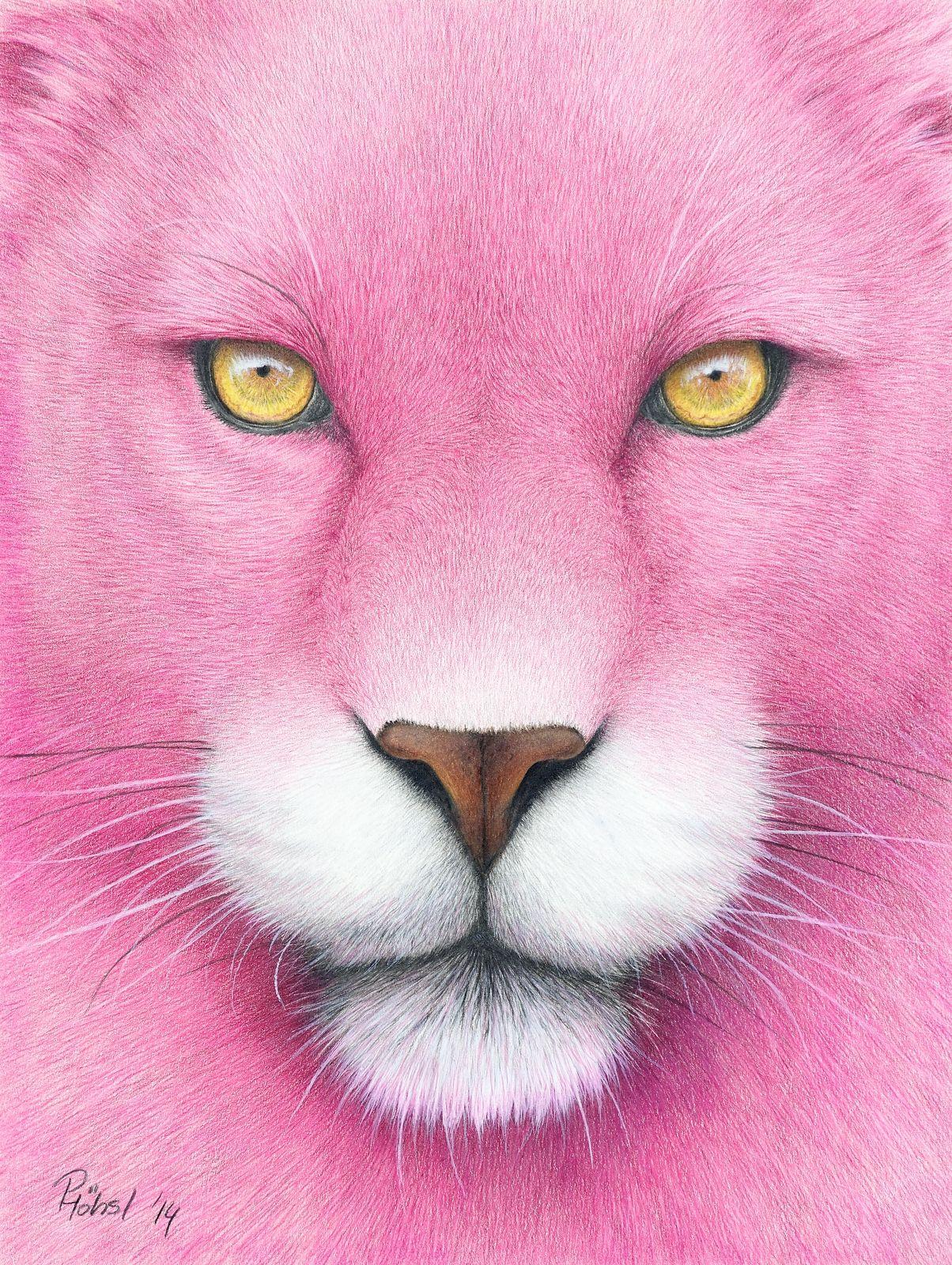 Peter Hohsl Coloured Pencil Drawings Zeichnung Rosa Panther Buntstiftzeichnungen