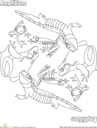 Amphibians Coloring Page April Teaching Ideas Coloring