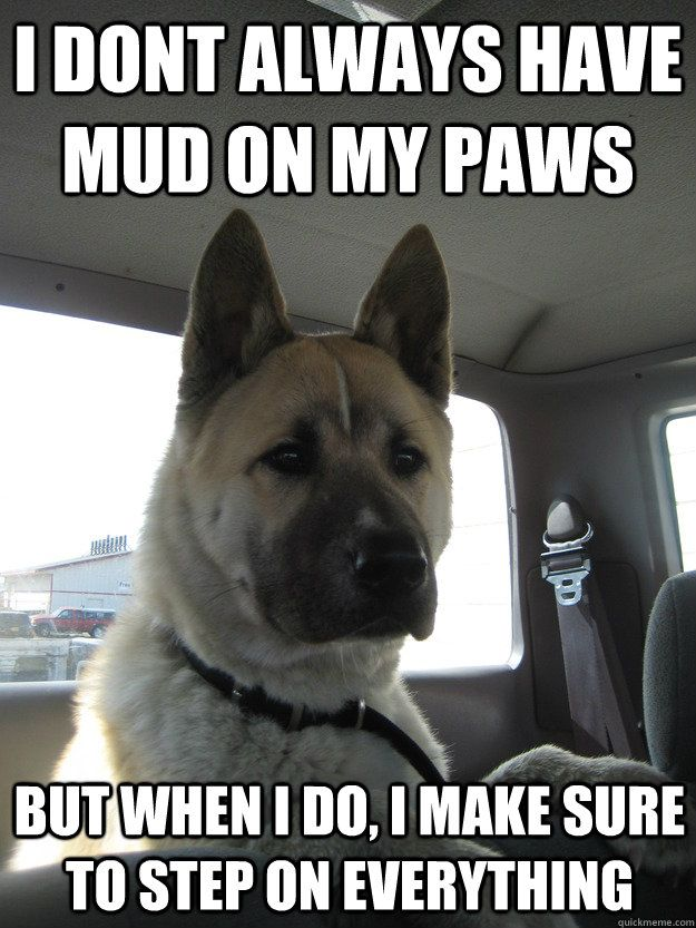 I Don T Always Have Mud On My Paws But When I Do I Make