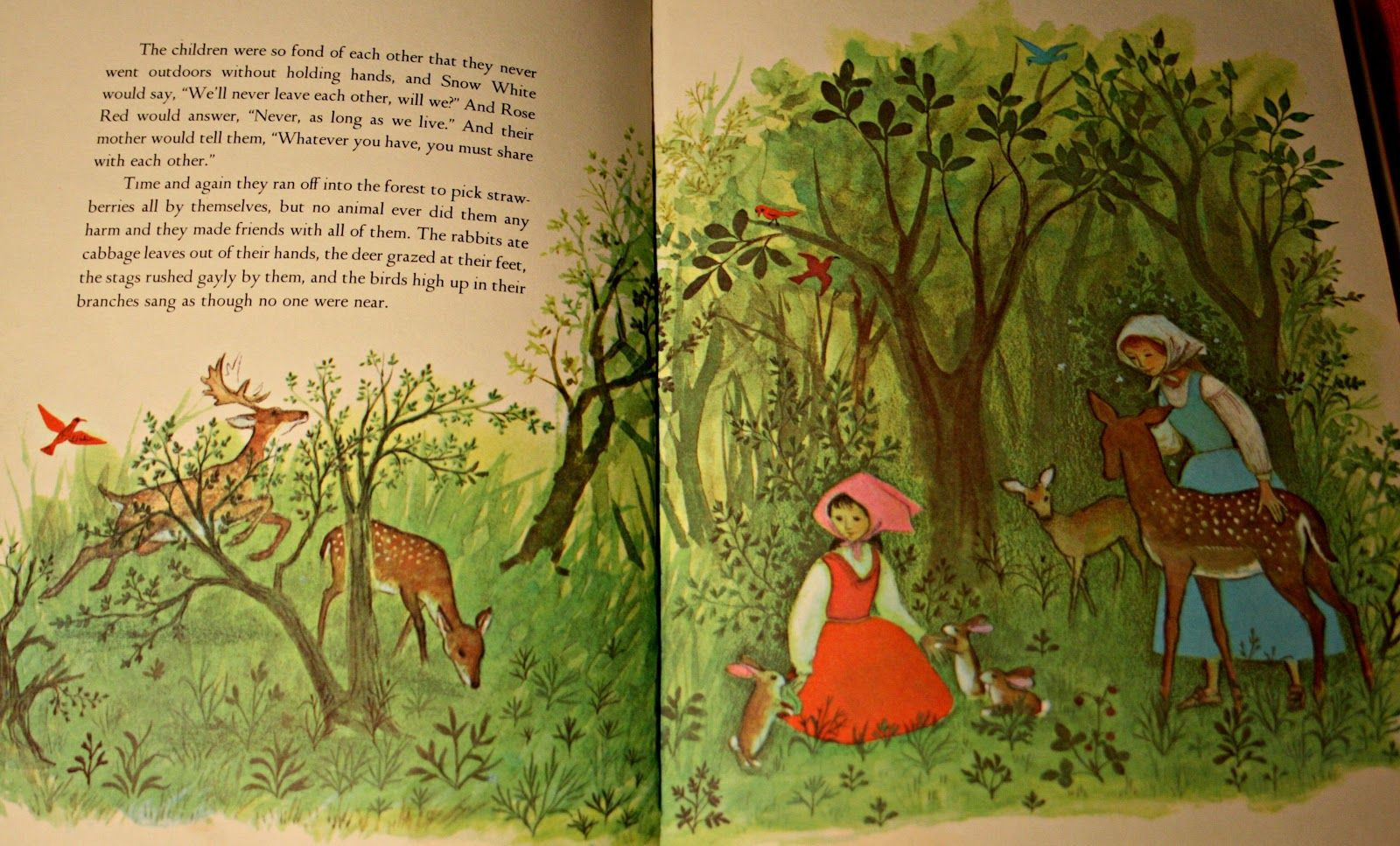 Grimms brothers grimm fairy tales brothers grimm