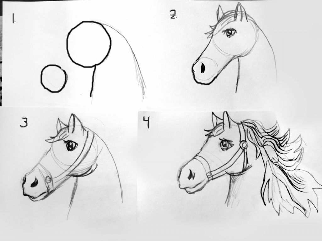 Drawing Ideas For Beginners Easy Drawing Ideas For ...