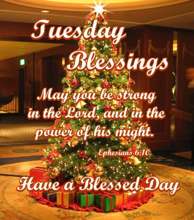 Good Morning, I pray that you have a safe and blessed day