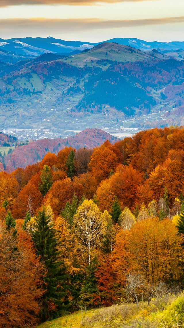 Fall Mountain Fun Red Orange Tree Nature Iphone 5s Wallpaper Download Iphone Wallpapers Ipad Wa Fall Wallpaper Nature Iphone Wallpaper Iphone Wallpaper Fall