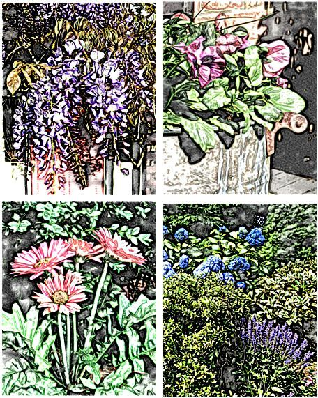 Enjoy free garden flower coloring pages at TodaysArts.net | Have Fun ...