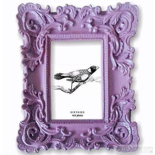 4 by 6-Inch Pink Sixtrees Baroque Frame