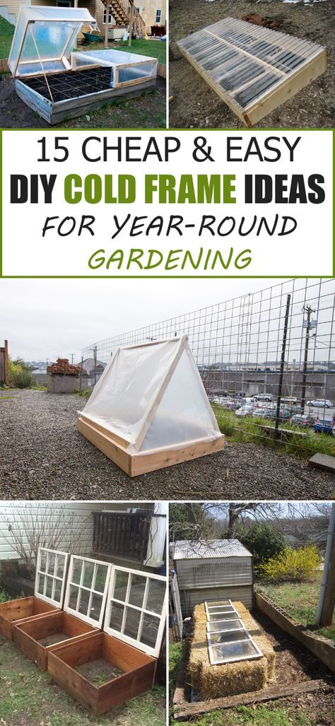 15 Cheap & Easy DIY Cold Frame Ideas for Year-Round Gardening | Cold ...