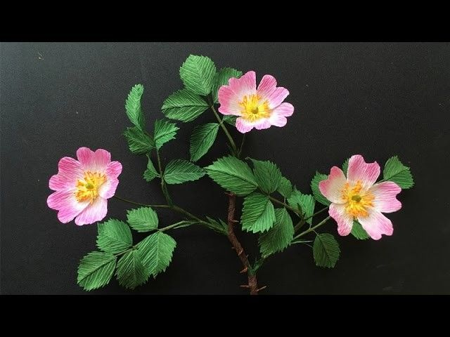 Abc Tv Paper Flowers Coffie Filter Crepe Paper Paper