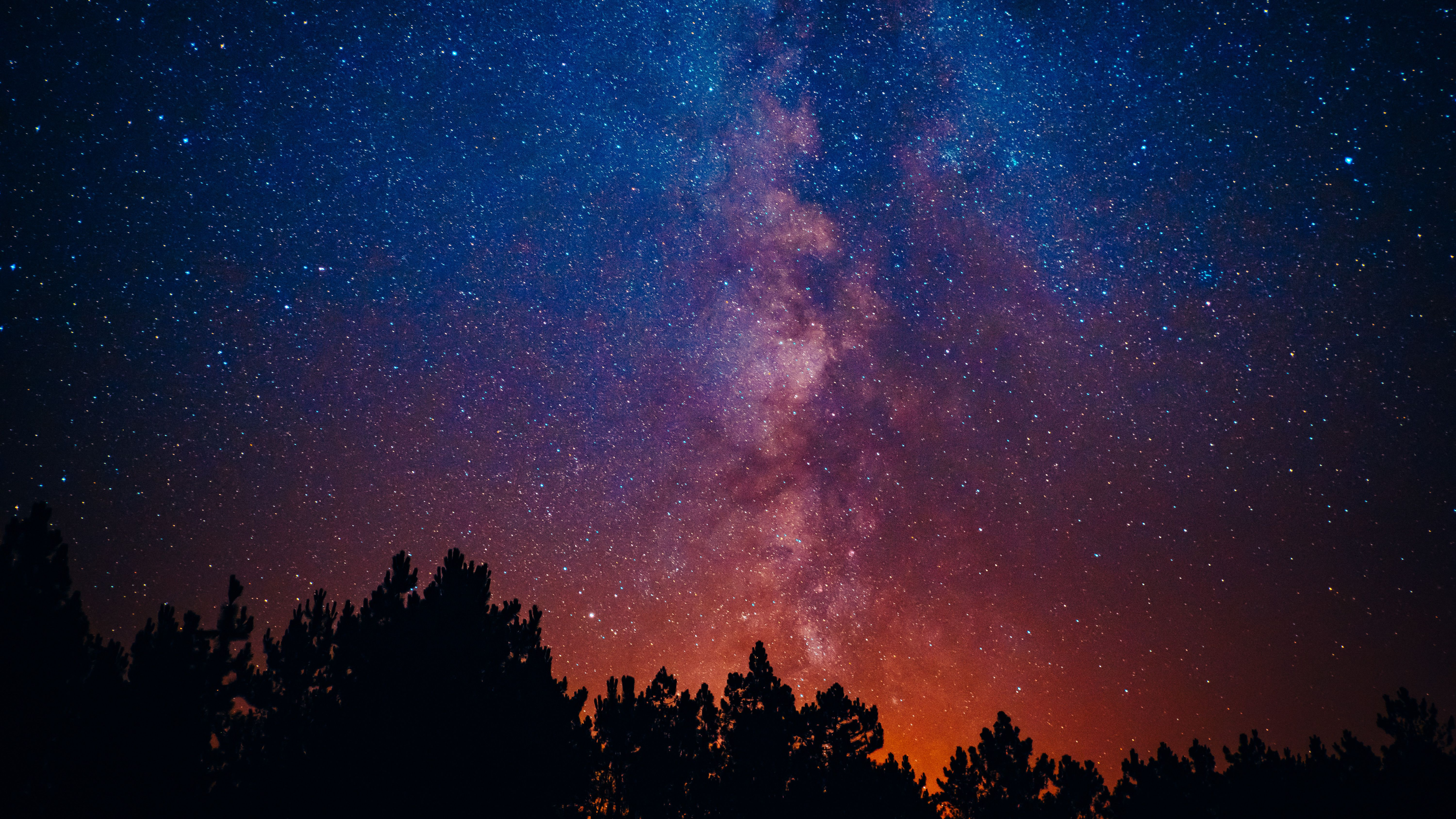 Free Images Nature Outdoors Space Outer Space Night Painting Nature Images Free Images Cactus trees night starry sky wallpaper
