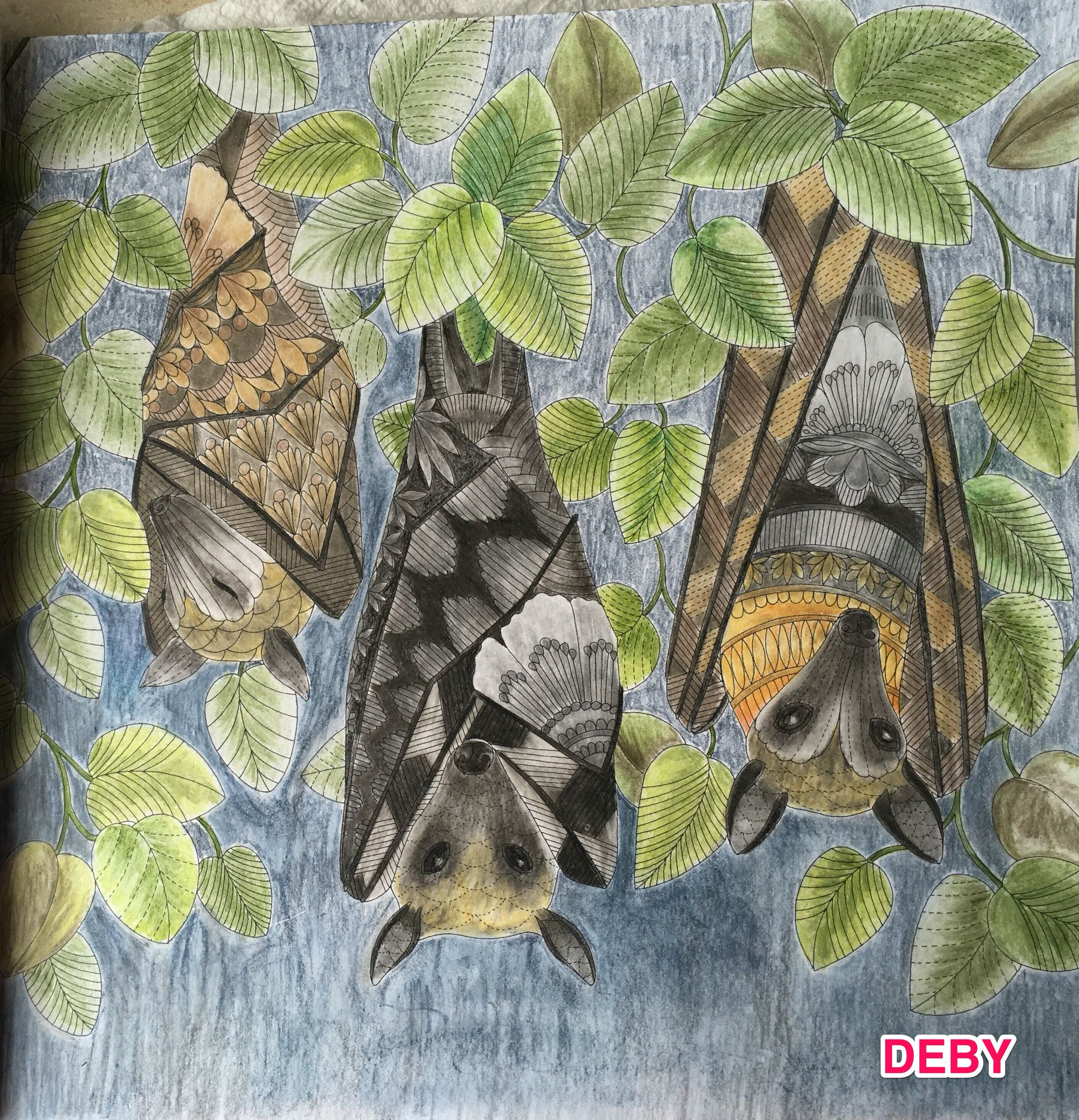 Bats From Tropical World By Millie Marotta Painted Deby Abecasis Coloring BooksAdult ColoringAnimal