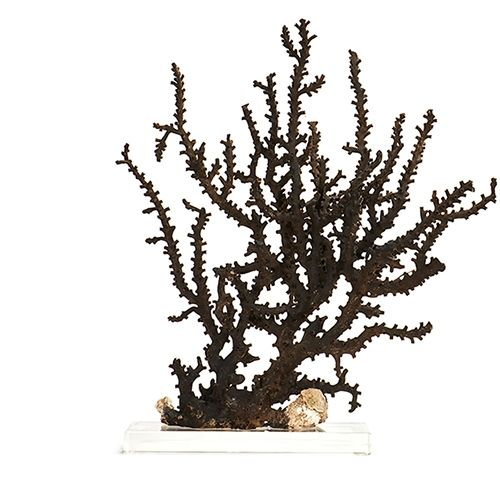 Pair of Black Octopus Corals on Lucite Bases from the Indo-Pacific Ocean by Katy Briscoe Home.