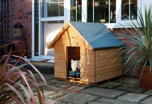 hundeh tte f r ihren gro en oder kleinen hund richtug ausw hlen tierwelt pinterest. Black Bedroom Furniture Sets. Home Design Ideas