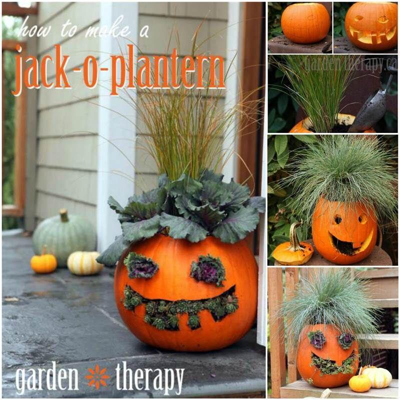 Creative Ideas - DIY Cute Pumpkin Planters   iCreativeIdeas.com ...