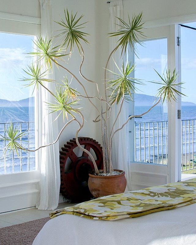 igorjosif | Design, Interior