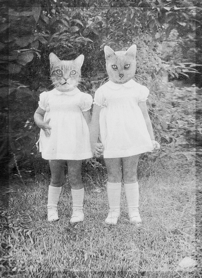 woodland creatures  (this reminds me of a photo of my mother and her sister, except they obviously weren't cats.  but I think my mom wished they were.)