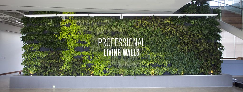 Vertical Gardens Green Wall Garden Planters for Urban Gardening