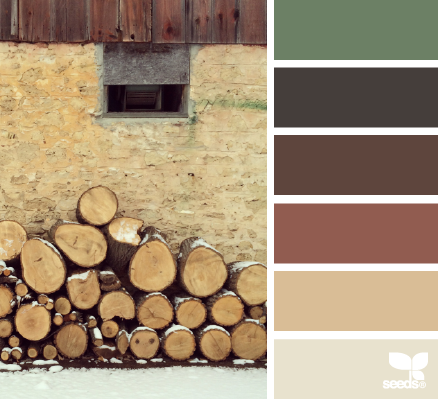 rustic hues (design seeds) | Seeds, Color inspiration and Design seeds