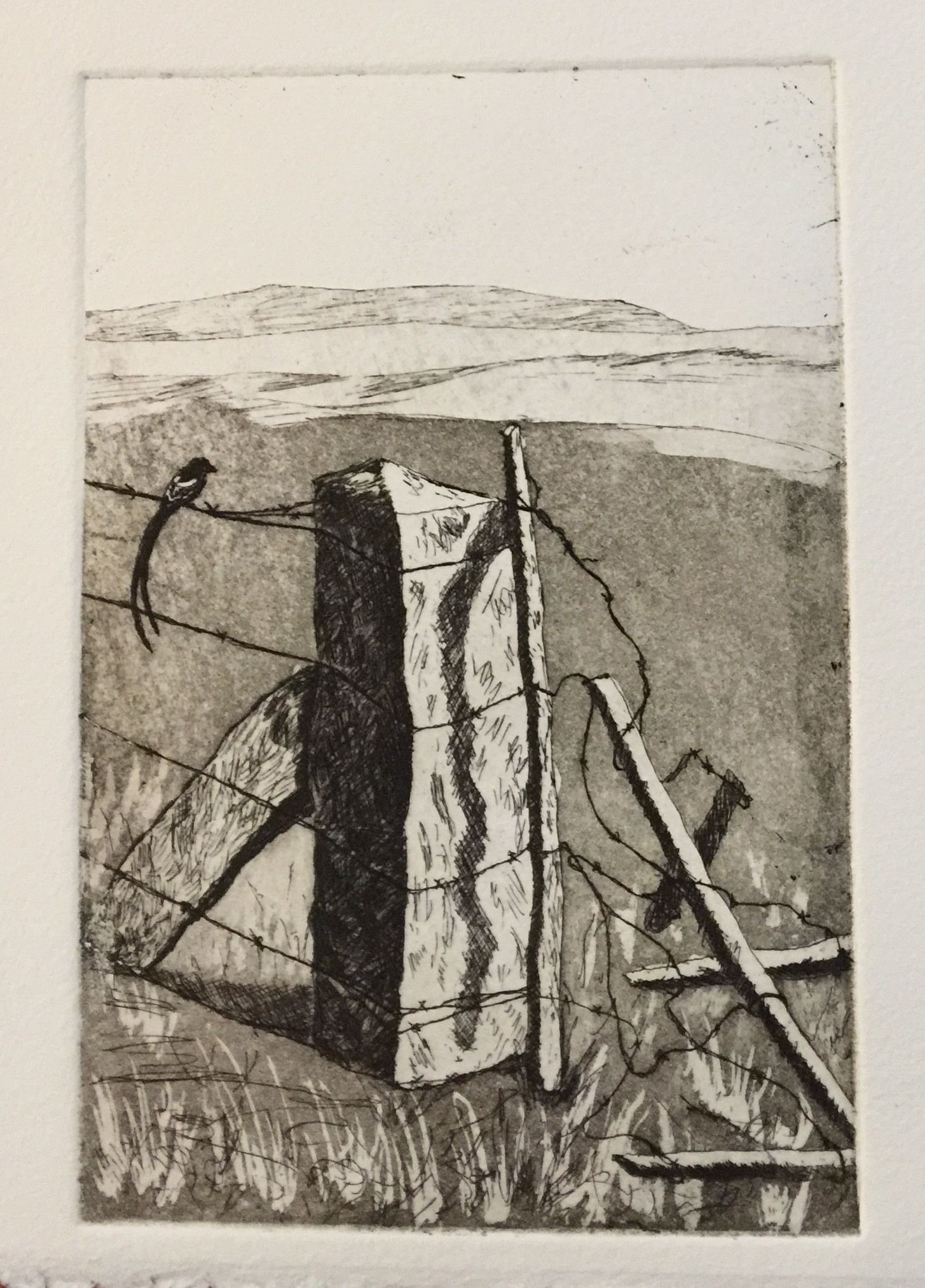 Copper Plate Hard Ground Etching With Aquatint Intaglio Printing Art Printmaking Prints