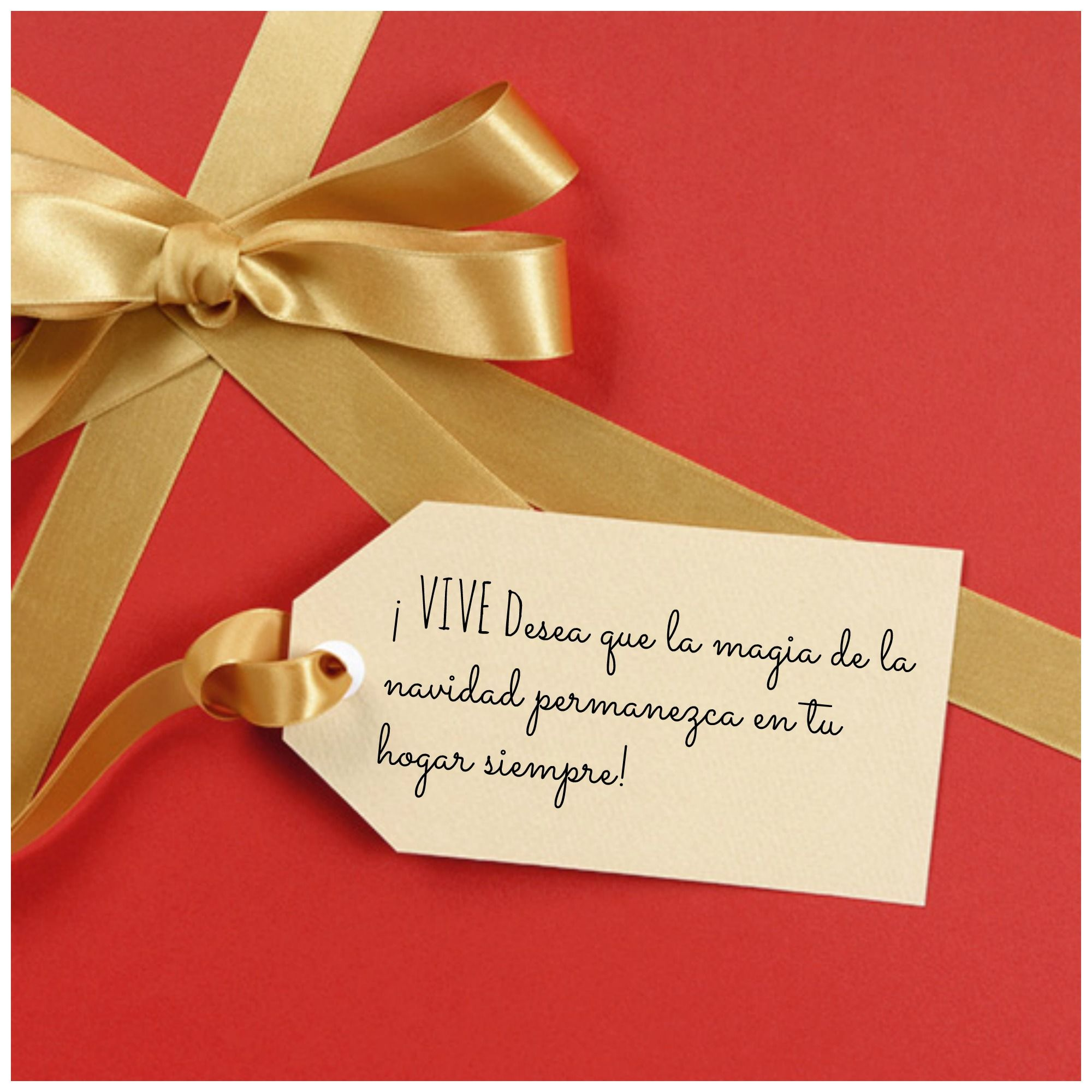 ¡Que la magia de la Navidad te acompañe durante el 2014!