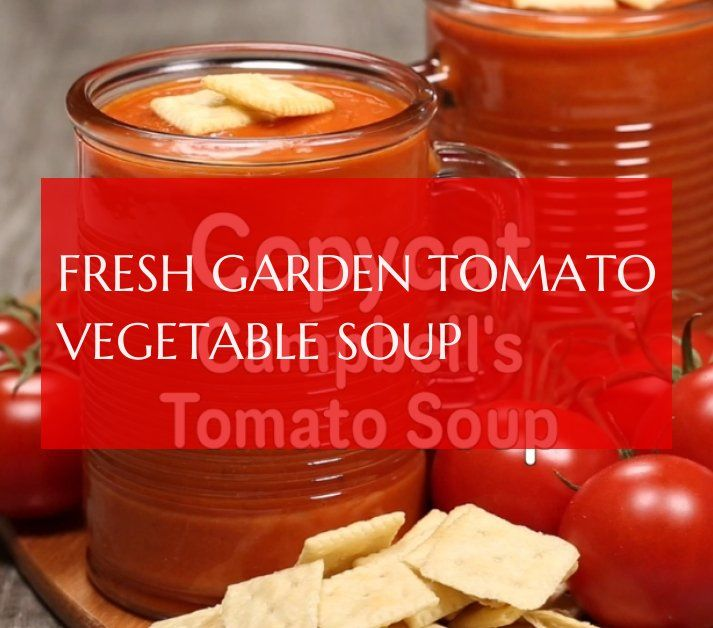 fresh garden tomato vegetable soup