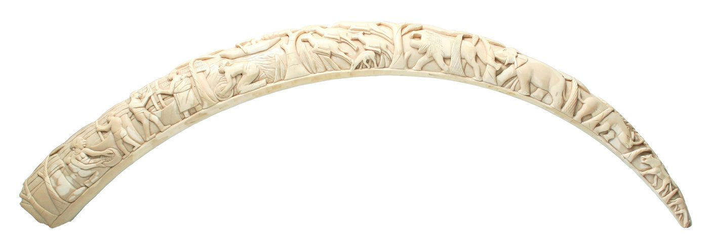 ivory | Carved ivory tusk of African elephant | Ivory ...  ivory | Carved ...