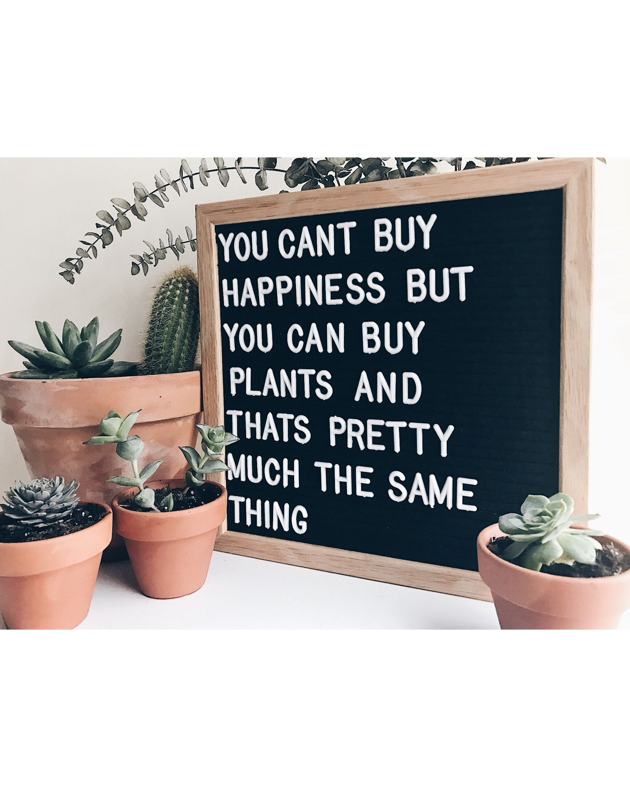 Message Wooden Display Sign New Cactus Plant Design Letter Board Home Decor