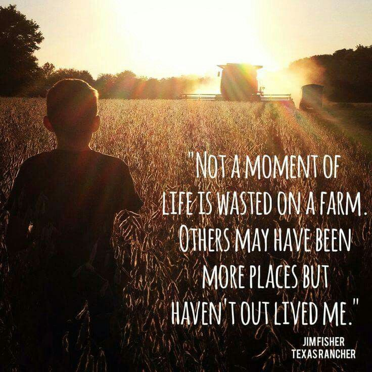 Pin By Popper60 On CountryQuotes Farm Quotes Farm Life Life Quotes Delectable Farm Quotes
