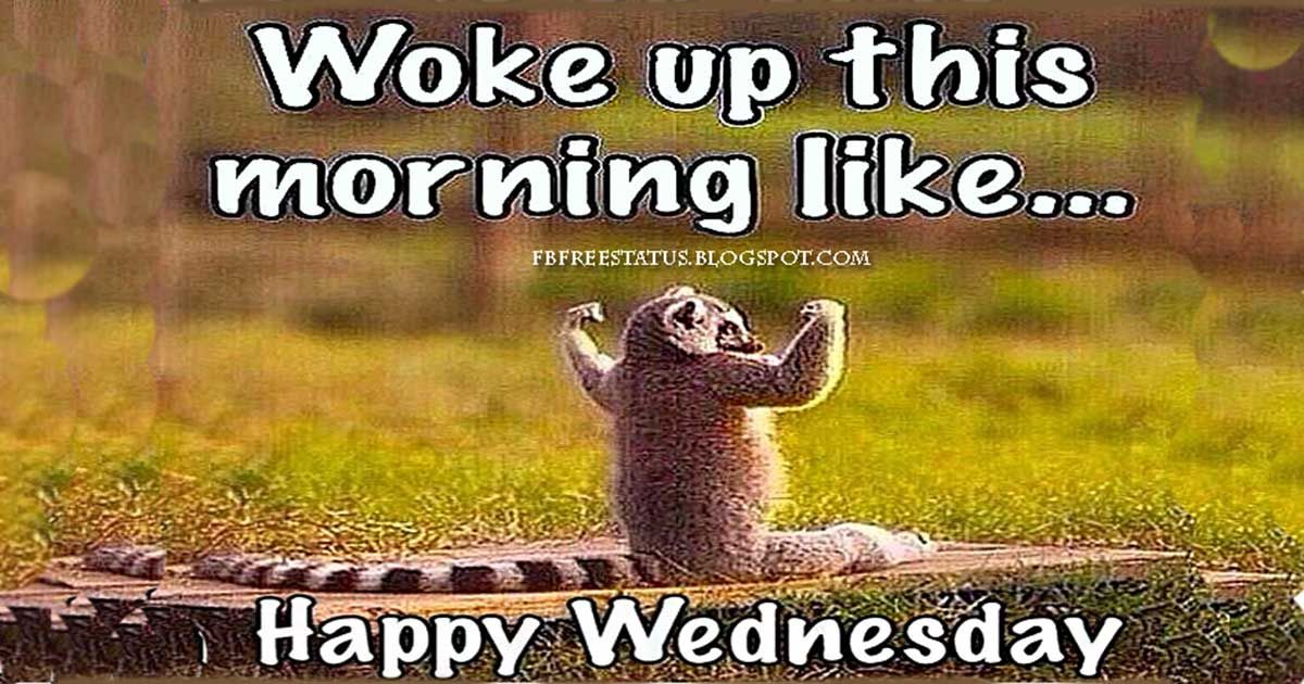 Happy Wednesday Pictures Funny in 2020 Good morning