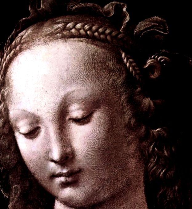Leonardo da Vinci  Madonna of the Carnation  detail