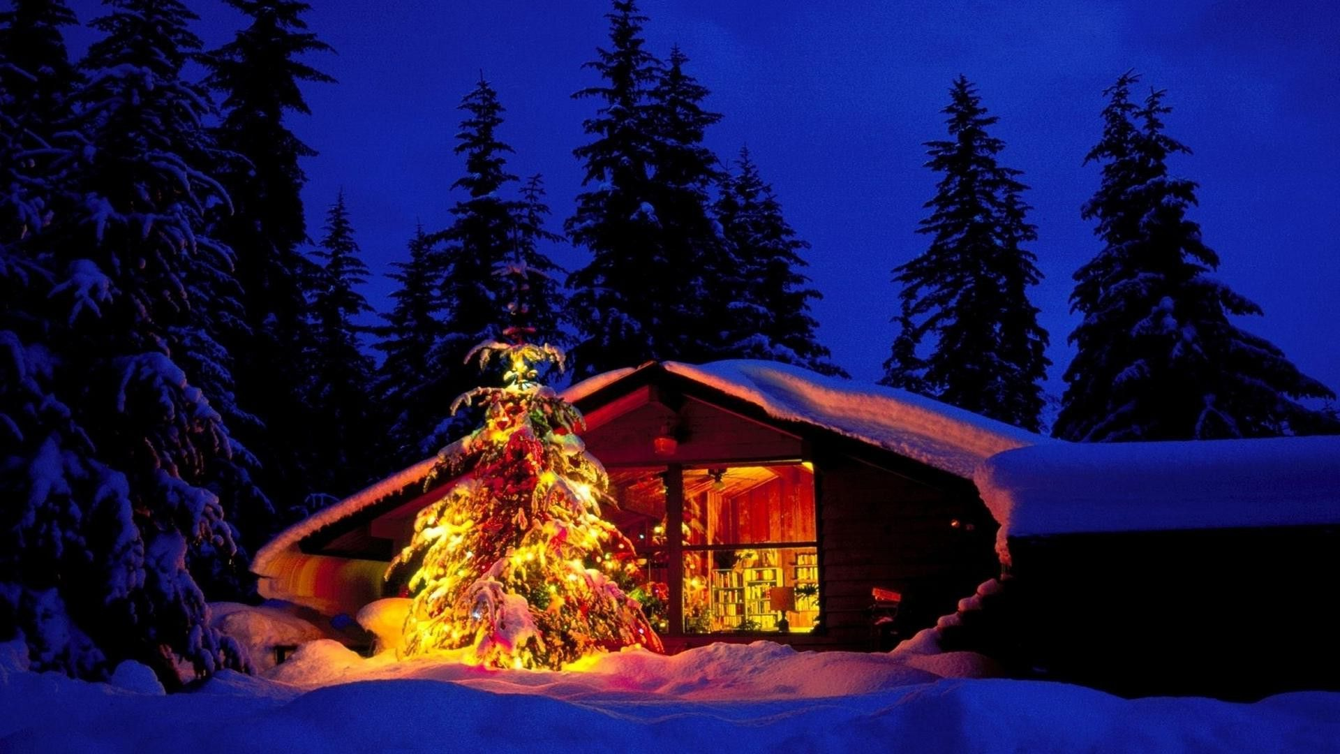 Christmas Nature Scenes HD Wallpapers 3 | Christmas Nature Scenes ...