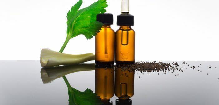 L'huile essentielle de céleri pour maigrir   Huiles ...